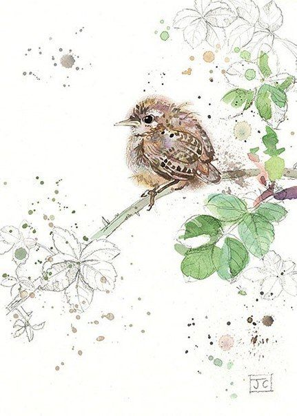 Prime Jane Crowther Art Pinterest Watercolor Bird And Funny Birthday Cards Online Chimdamsfinfo