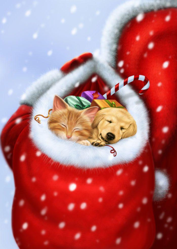 Colin Howard - Santas bulging sack.jpg