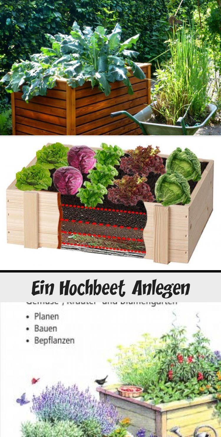 Xoctail Com In 2020 Hochbeet Anlegen Hochbeet Garten