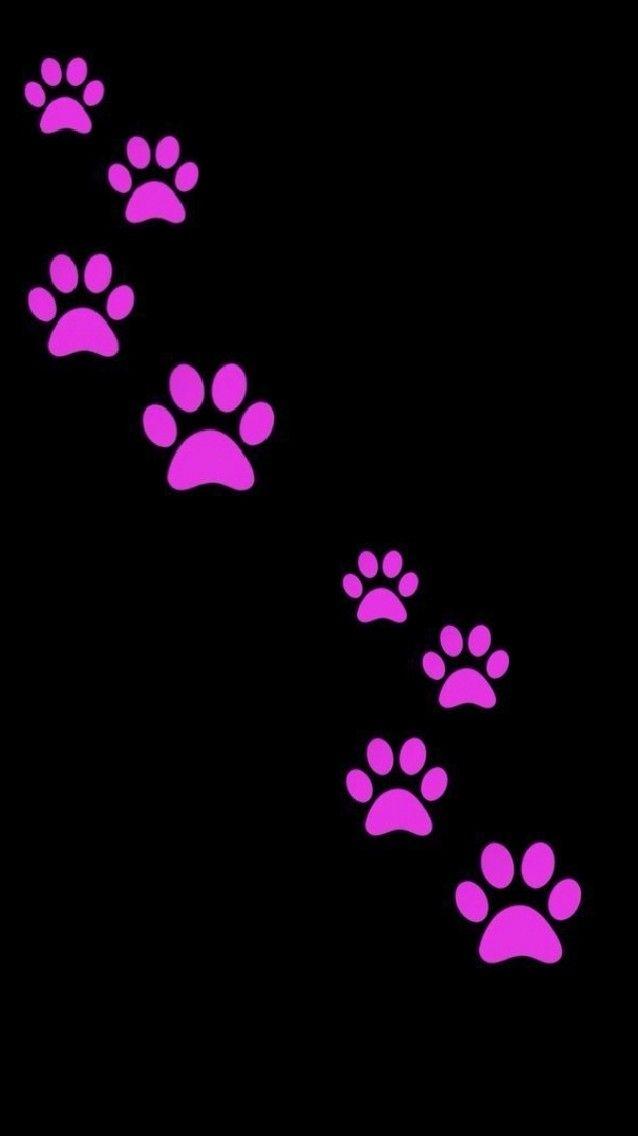 Pink Paw Prints Trail Rose Gold Wallpaper Iphone Iphone Wallpaper Art Wallpaper Iphone