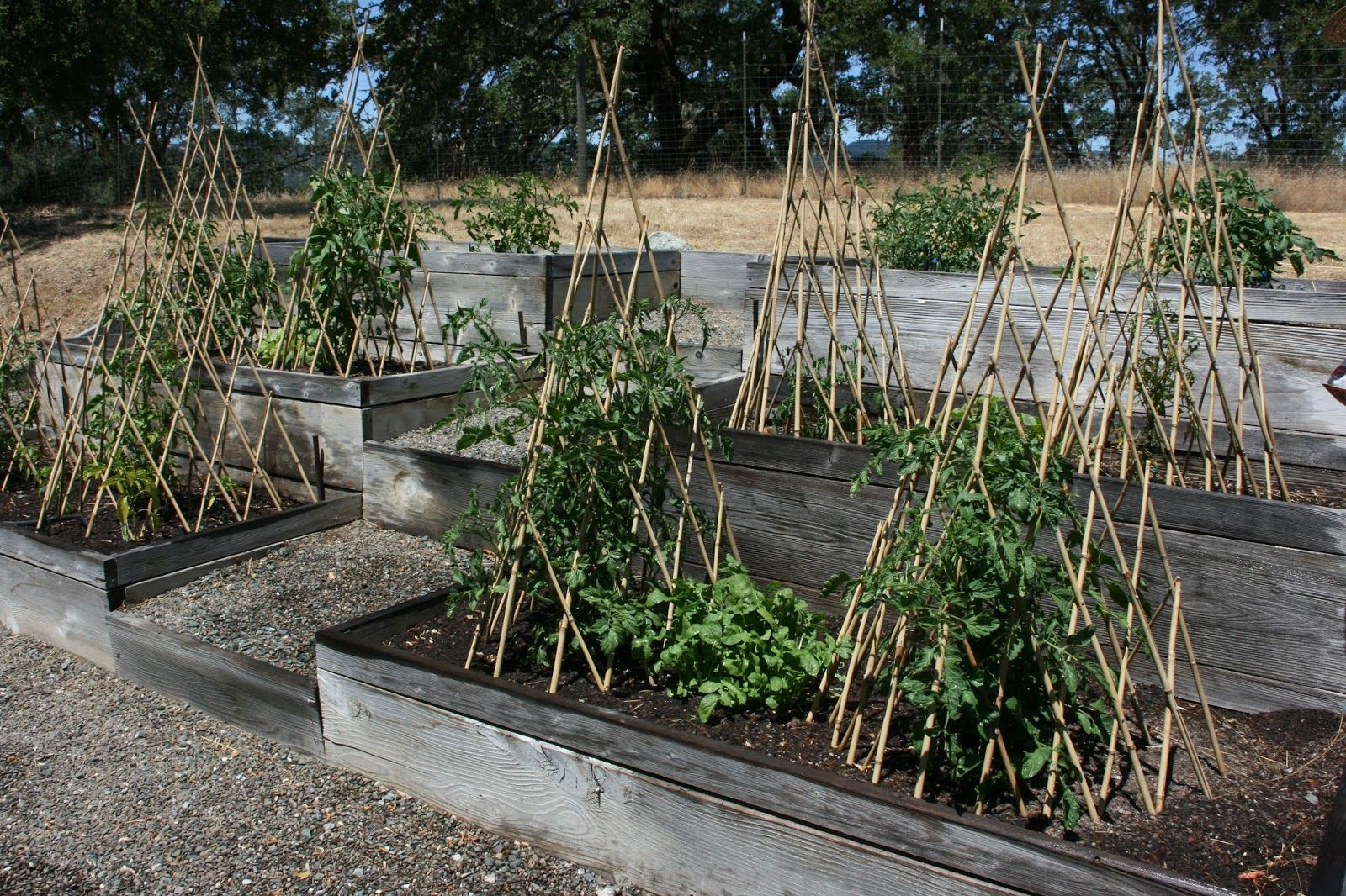 Image Result For Uses Raised Beds