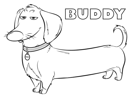 Buddy From The Secret Life Of Pets Coloring Page Secret Life Of Pets Dog Coloring Page Pets Drawing
