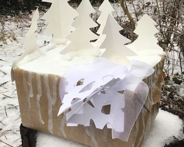 winter gift wrap idea