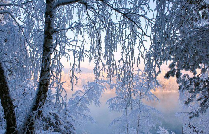 Winter Christmas Backgrounds Tumblr | • W e a t h e r ...