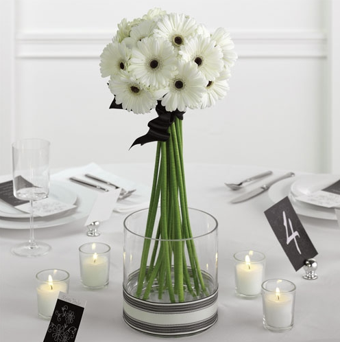 Fav Finds Flower Friday The Gerbera Daisy Adore Event Ideas
