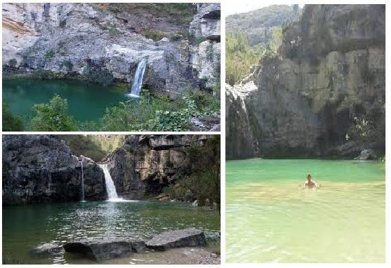 32 Ideas De Lugares Parques Naturales Vegetacion Del Bosque Día De Santa Lucía