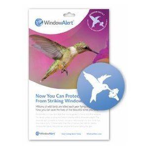 Hummingbird Window DecalSave Wild Birds Wwwamazoncom - Window alert hummingbird decals amazon