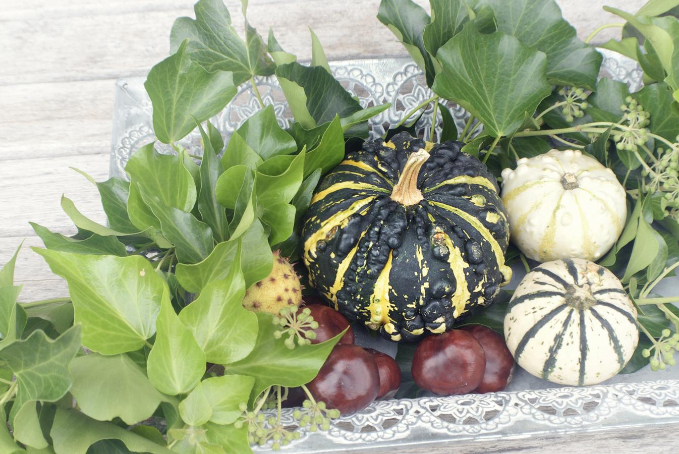 Herbstdekoration für Hof&Garten