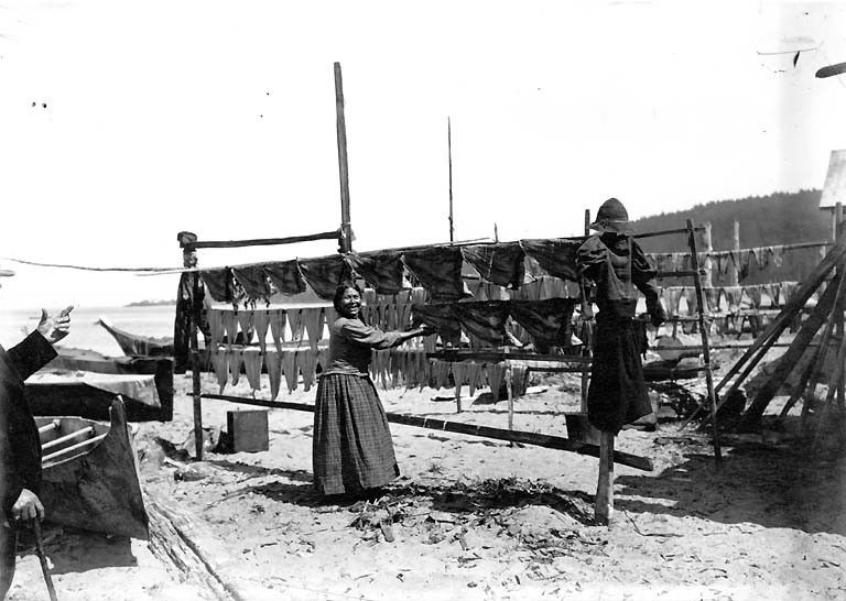 Makah woman and fish drying on a rack, Neah Bay, ca. 1900, UW Library American Indians of the Pacific Northwest Collection