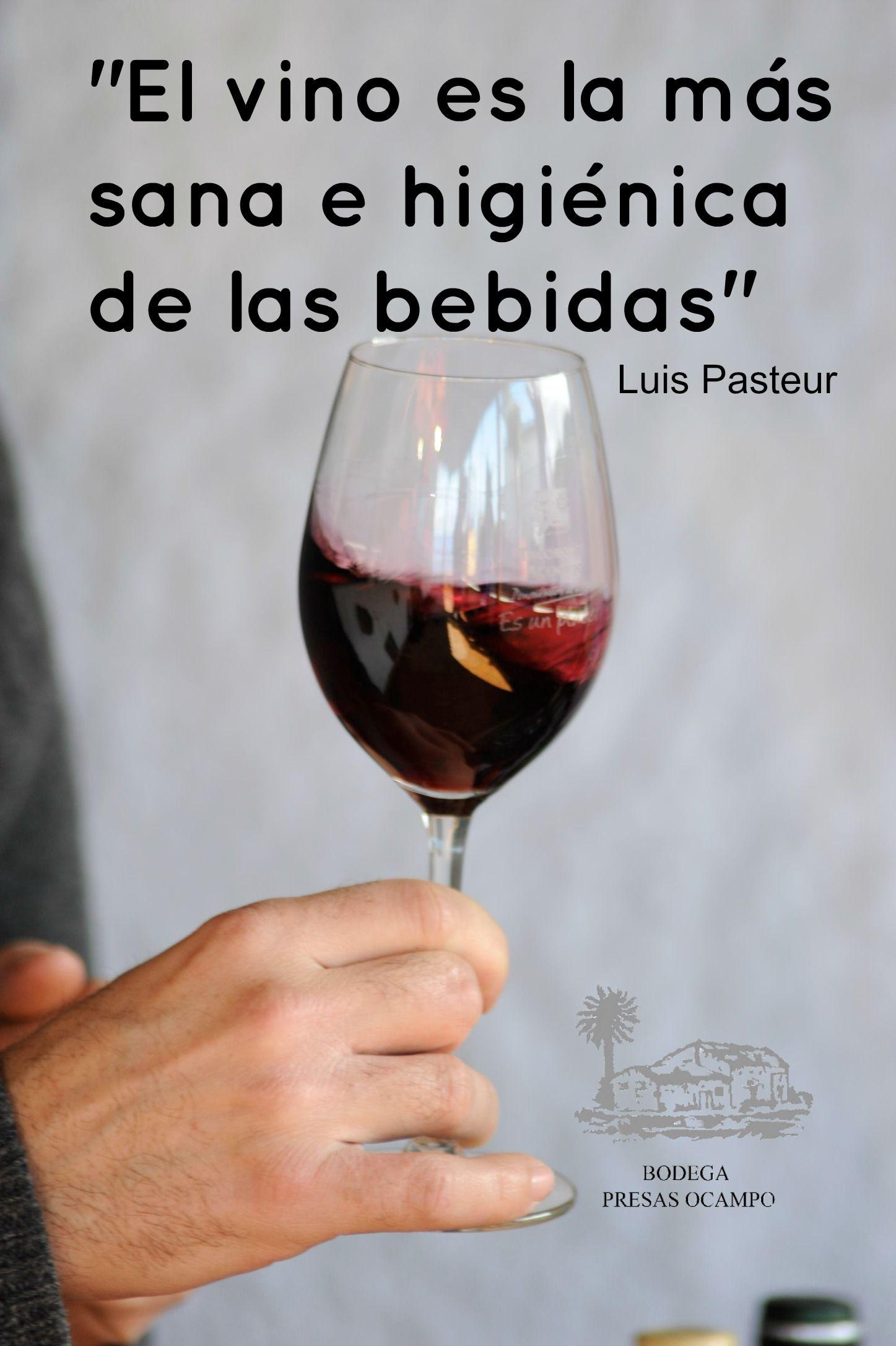 Frases De Vinos Vinosdetenerife Vinos Vinos Frases Y