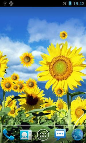 Sunflower Live Wallpaper Android Live Wallpaper Gallery Books