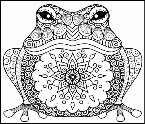 Pin By Patje Soubry On Coloringpages Frog Coloring Pages Animal Coloring Pages Mandala Coloring Pages