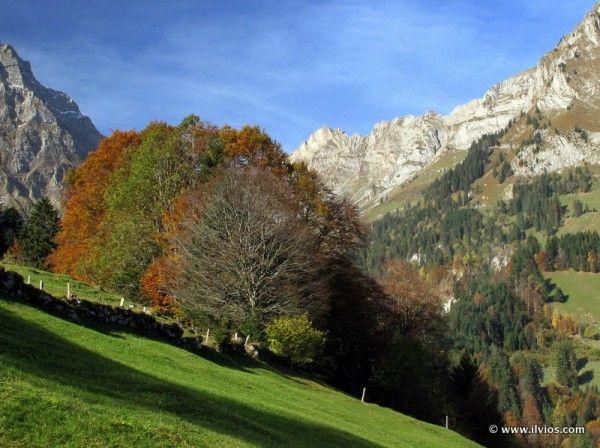 Colors of Swiss autumn - Titlis, Switzerland.