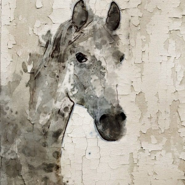 Marmont hill glaeta horse by irena orlov painting print on wrapped canvas