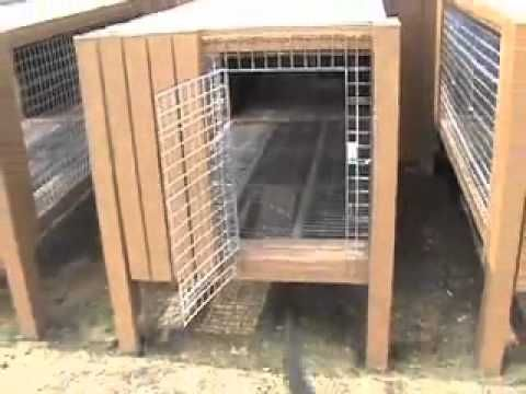 easy kennel raised dog kennel design youtube dog kennel design ideas - Dog Kennel Design Ideas
