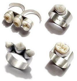 Keyla FN Blog: 10 Creepy Pieces of Taxidermy Jewelry