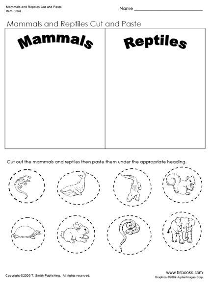 Day 32- Mammal and Reptiles Cut and Paste Worksheet Sonlight P4/5