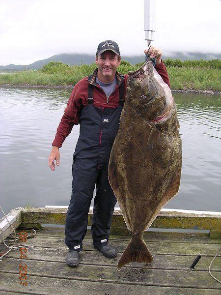 Fish Cakes Recipe Deep Sea Fishing Sea Fishing Halibut Fishing