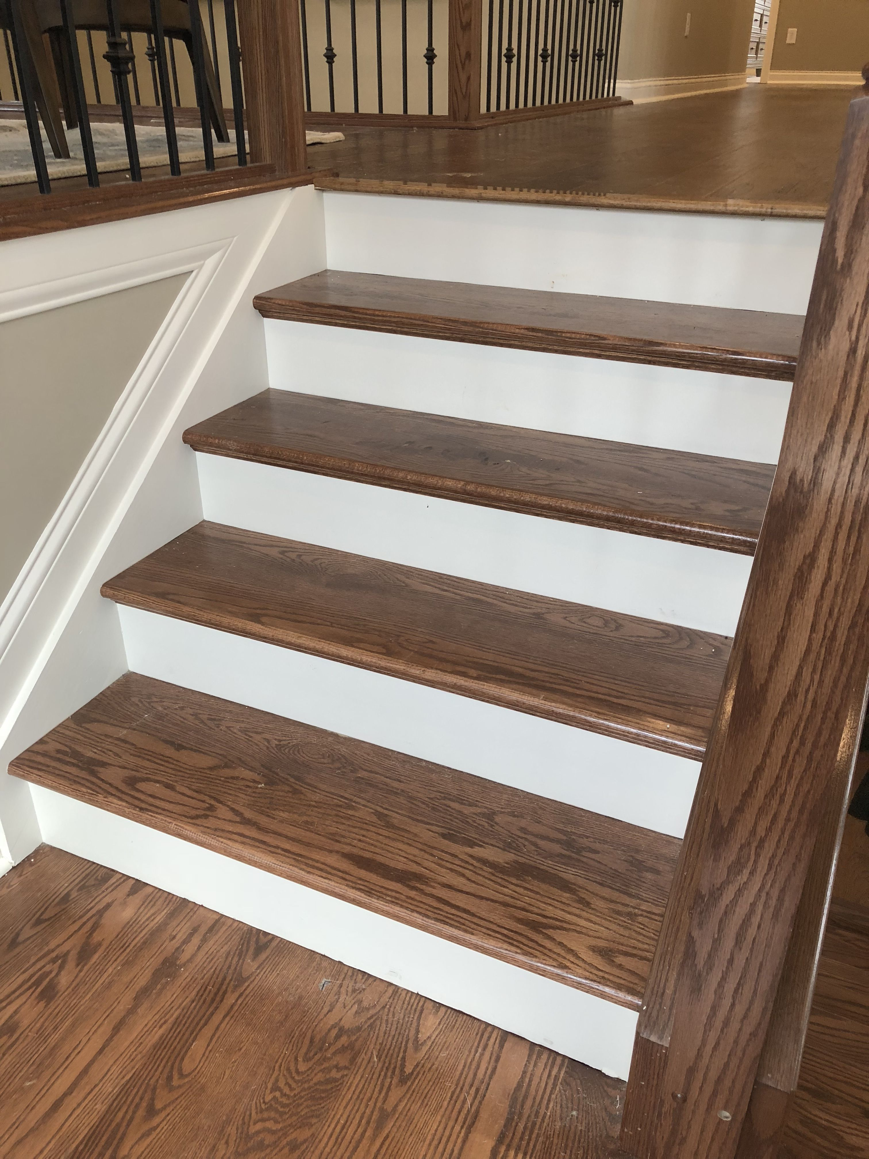 Stained Oak Treads With Painted Risers Warm Chestnut Stain   Staining Stair Treads And Painted Risers   Open Stair Basement   4 Thick   Walnut   Design   Commercial Business