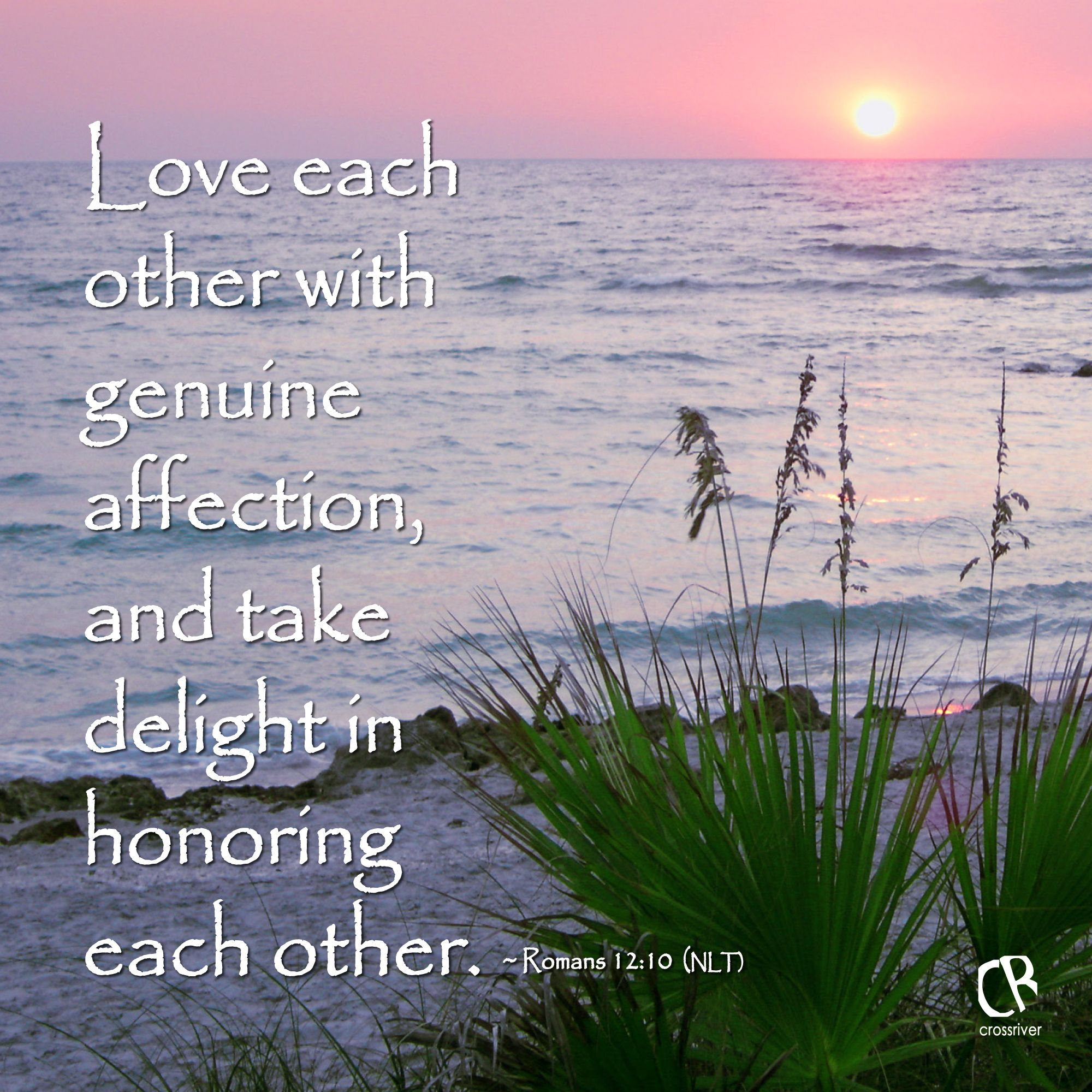 Love Each Other Religious: Love Each Other With Genuine Affection, And Take Delight