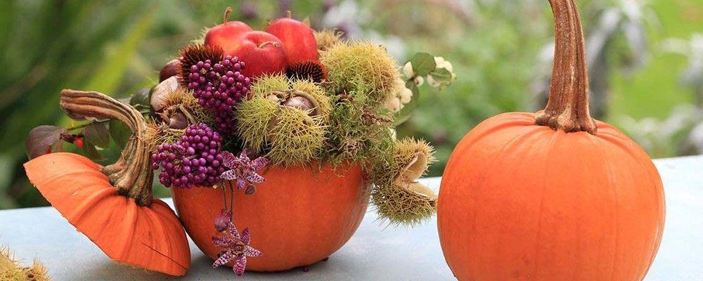 Vier het najaar met een uitgeholde pompoen vol herfstmaterialen extra leuk aan deze schikking - Deco halloween tafel maak me ...