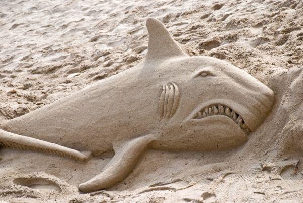 Shark sand sculpture | Beach Pins We Love | Pinterest ...