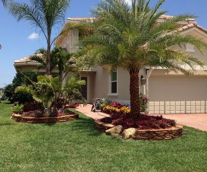 50 Florida Landscaping Ideas Front Yards Curb Eal Palm Trees 10