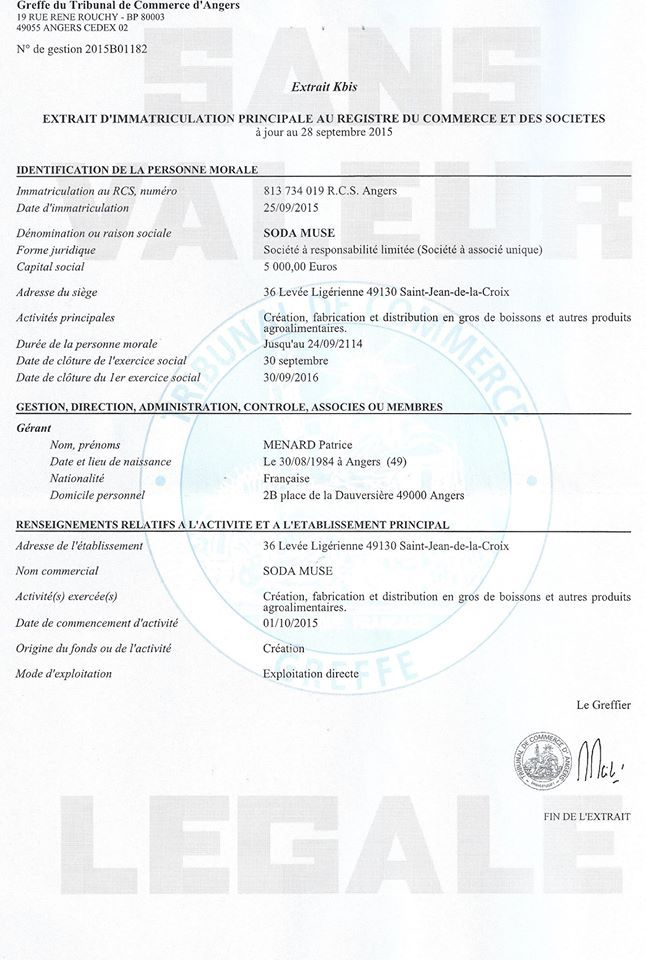 Extrait K-Bis Acte de naissance de Sodau0027Muse Pinterest - prenuptial agreement form