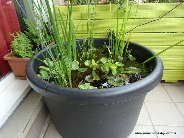 mini bassin de balcon la nouvelle tendance blog zone aquatique jardin aquatique fontaine. Black Bedroom Furniture Sets. Home Design Ideas