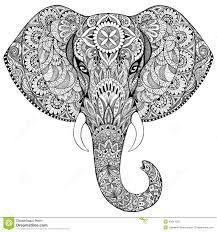 Resultado de imagem para elefante indiano desenho
