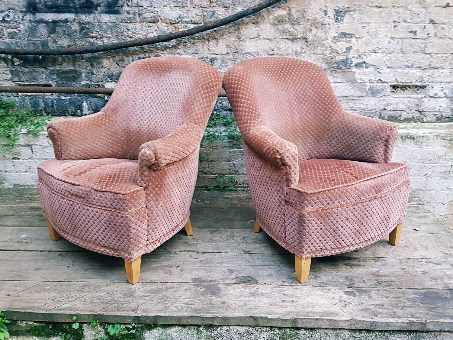 Coprisedie Thonet ~ 42 best poltroncine rivestite images on pinterest chairs