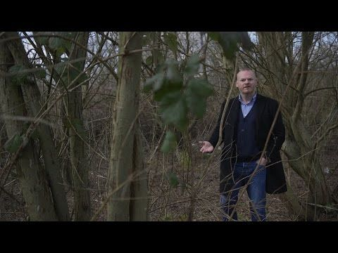 George Shaw: In the Woods - YouTube