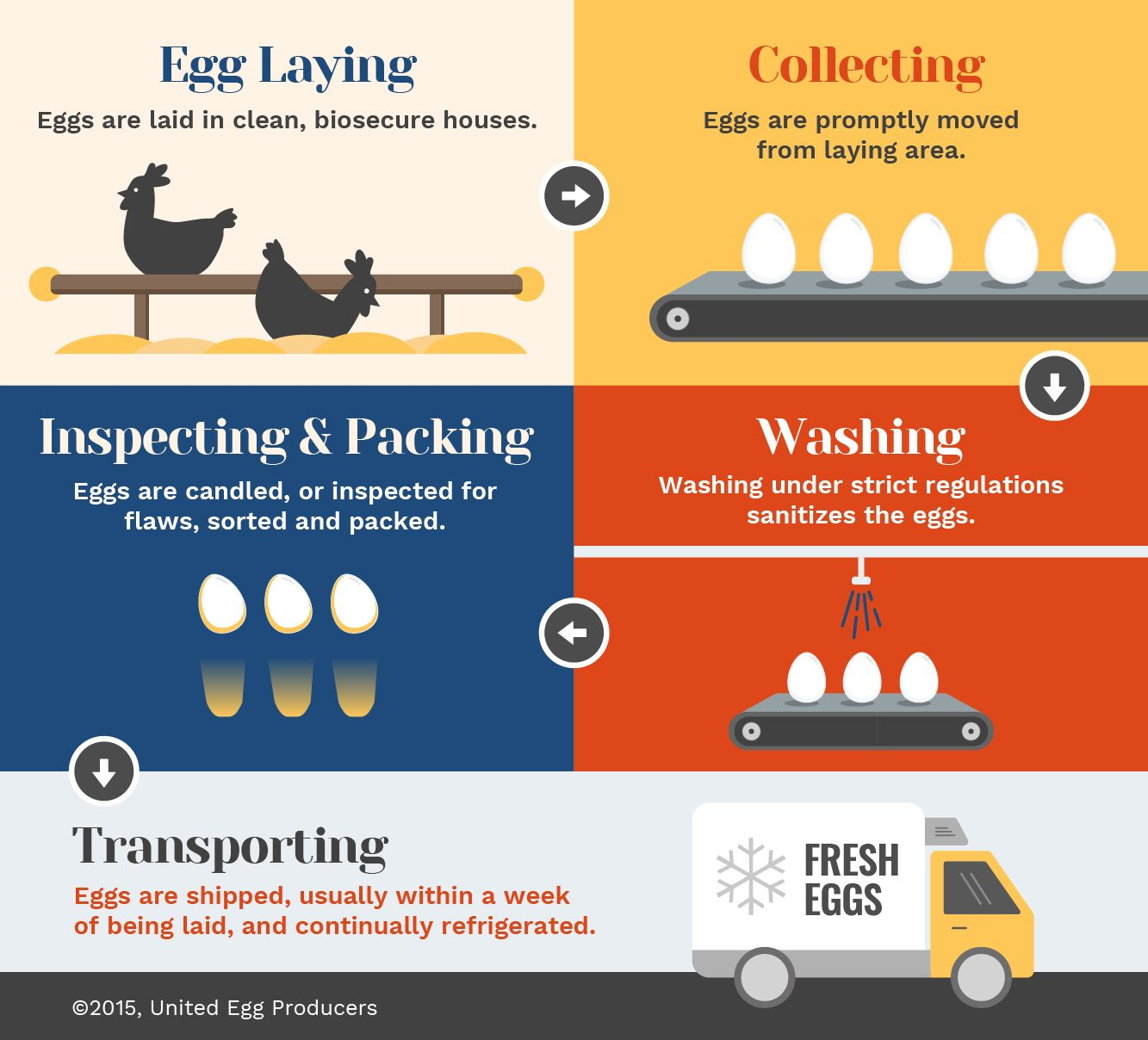 Eggs Fresh From The Farm Dengan Gambar