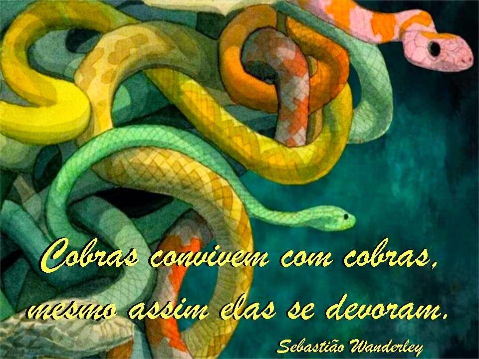 Pensamentos Soltos: Serpentes são traiçoeiras!!!