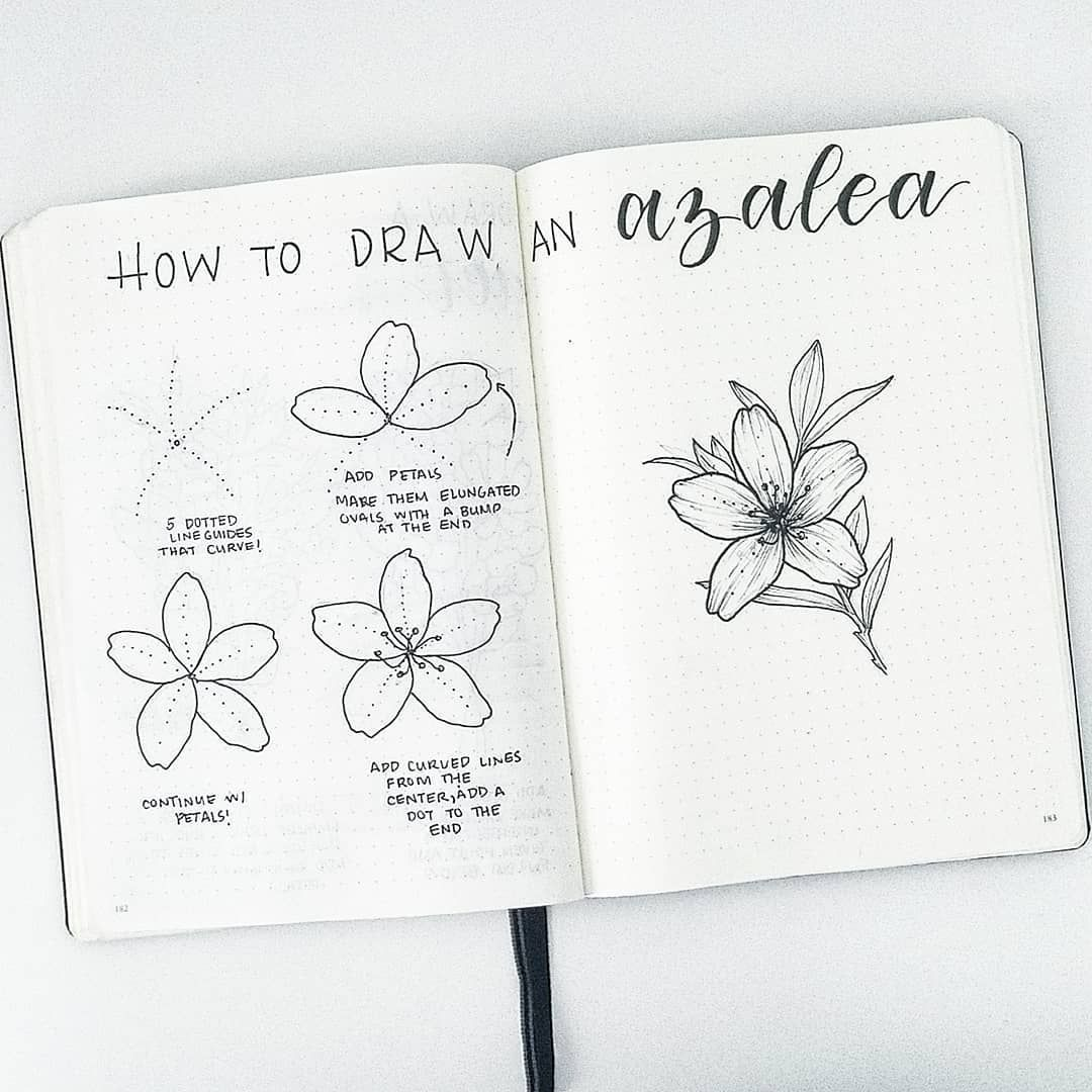 Easy Flower Doodles Video Tutorials To Show You How To