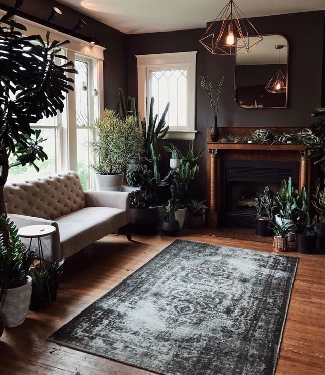 Dark Hued Living Room Accented With Plants Dark Living Rooms