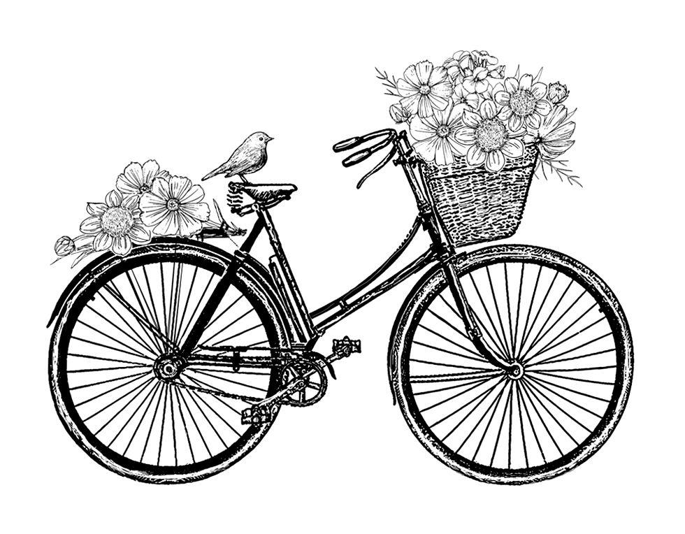 Pingl par chris ochenski sur beautiful bicycles - Dessin bicyclette ...