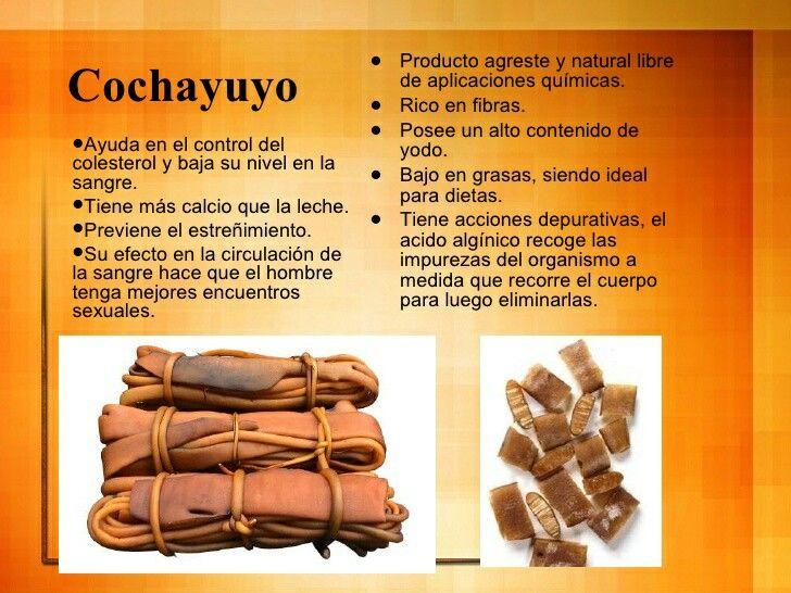 el cochayuyo sirve gestation inclinar de peso