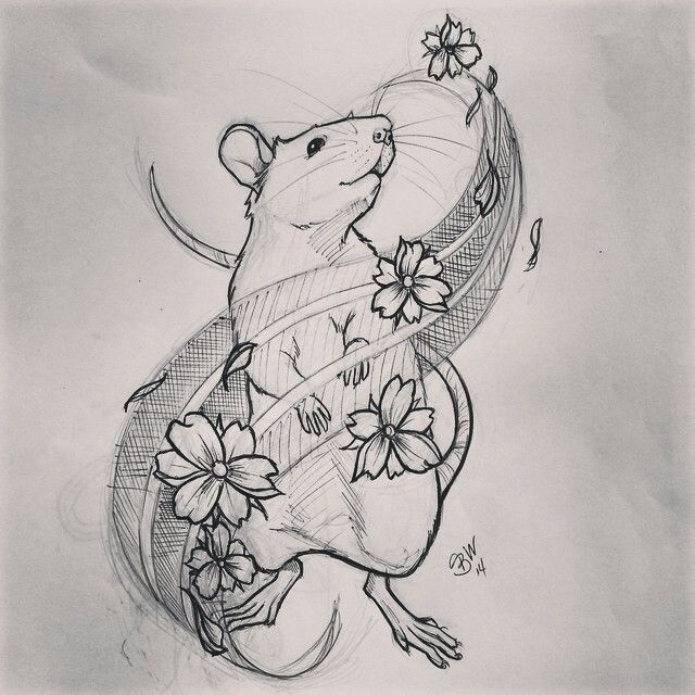 Rat Tat Rat Tattoo Animal Tattoos Tattoos