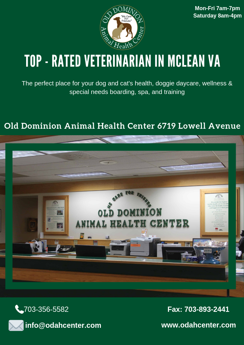 We Provides High Quality Compassionate Professional Veterinary Care For Dogs And Cats In Va Your Pet S Health Is Very Impo Pet Health Pet Vet Veterinary Care