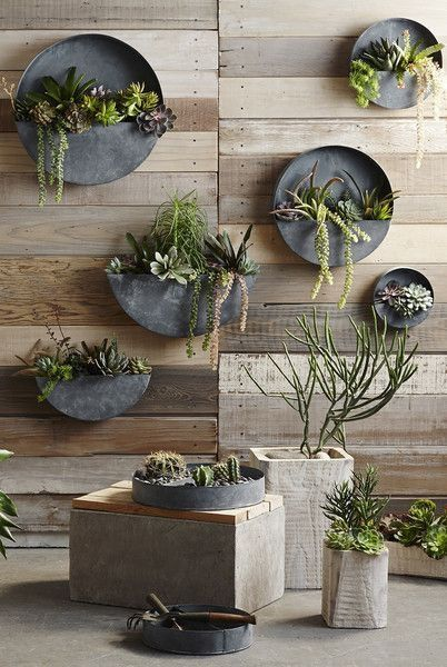 Perfect For Succulents And Small Plants, These Full And Half Circle Wall  Planters Are Both Rustic And Original.