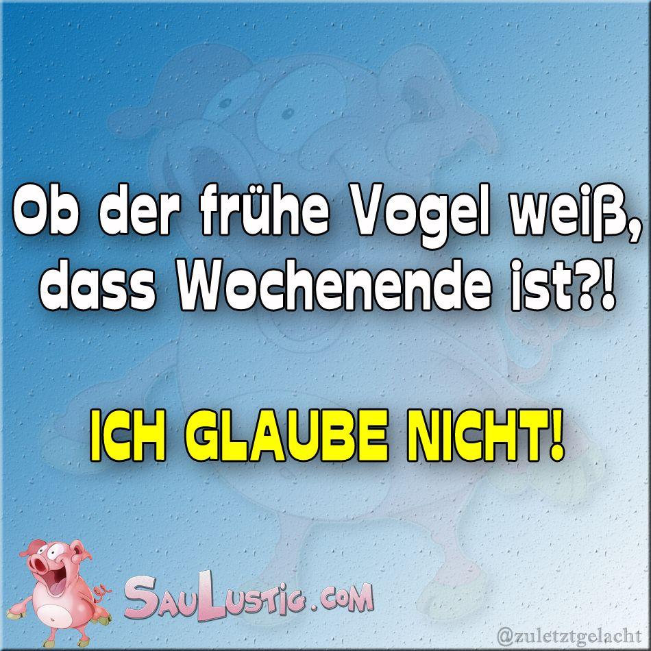 Der Frühe Vogel Http://saulustig.com