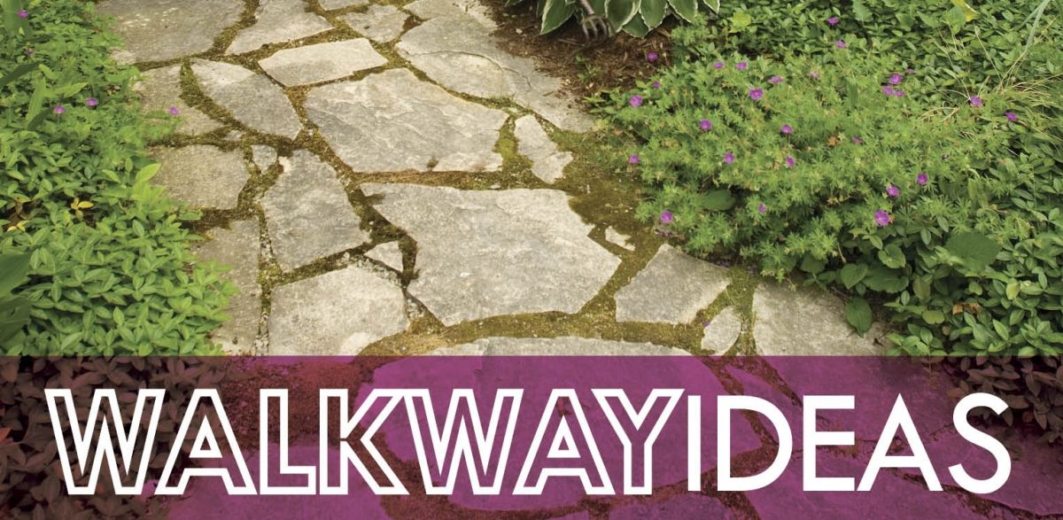 Enhanced Curb Appeal with Walkway Landscaping   The Grounds Guys