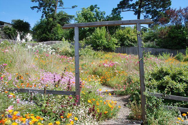DSC_2218 | Outdoor, Garden, Outdoor structures