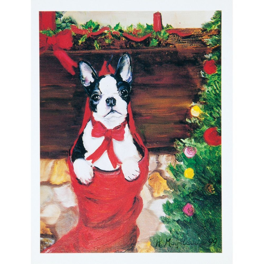 6 boston terrier boxed christmas greeting cards christmas greeting 6 boston terrier boxed christmas greeting cards kristyandbryce Choice Image