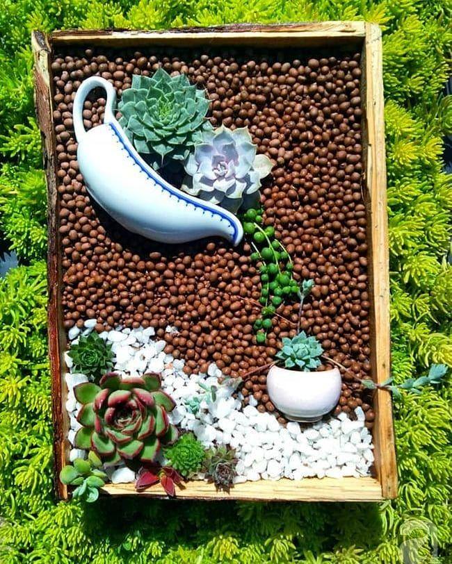 Pin On Garden Genius