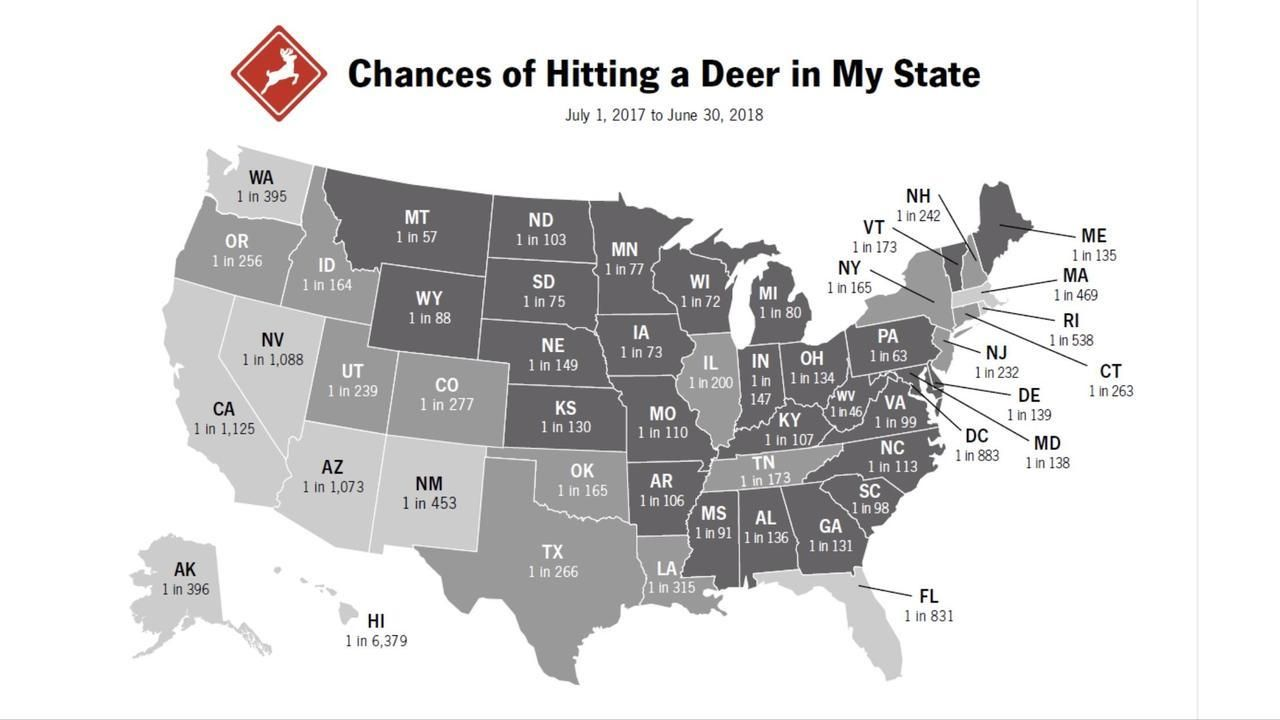 Maps On The Web How Likely You Are To Hit A Deer With Your