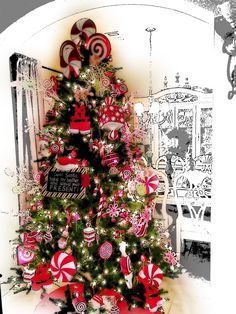 Candy Cane Christmas Tree Decorations Peppermint Christmas Decorations  Google Search  Christmas Trees