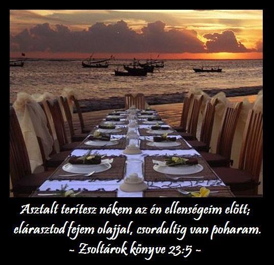 """Asztalt terítesz nékem az én ellenségeim elõtt; elárasztod fejem olajjal; csordultig van a poharam."""" zsolt-23_5"""