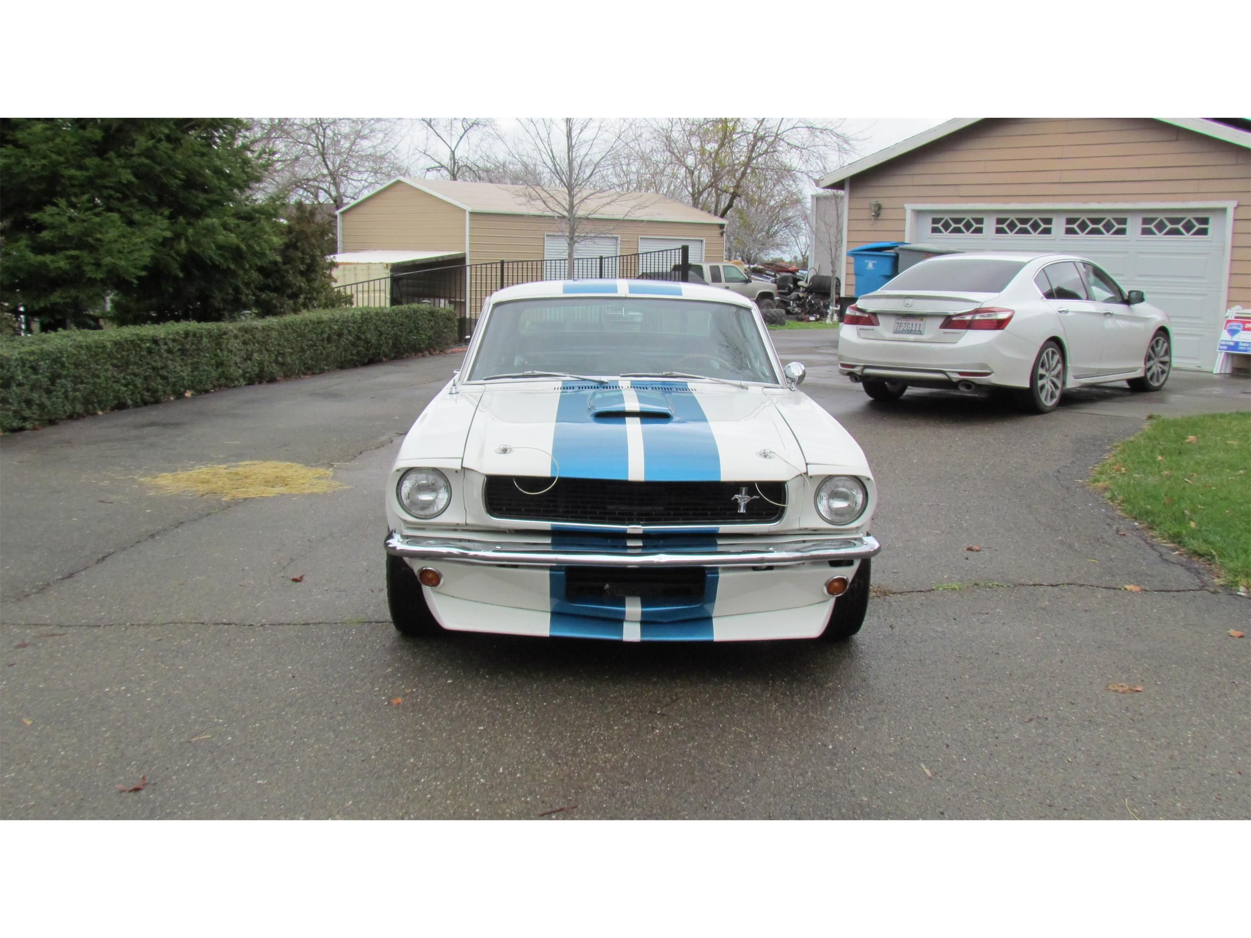 White 1966 Shelby Gt350 For Sale Listing Id Cc 1186215